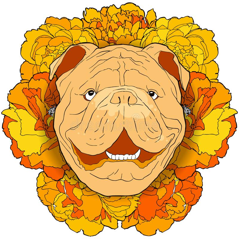 Hand drawn funny bulldog portrait with yellow flowers background vector illustration