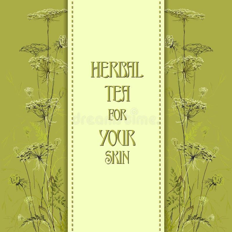 Hand drawn green herbs. Vertical design background. royalty free illustration