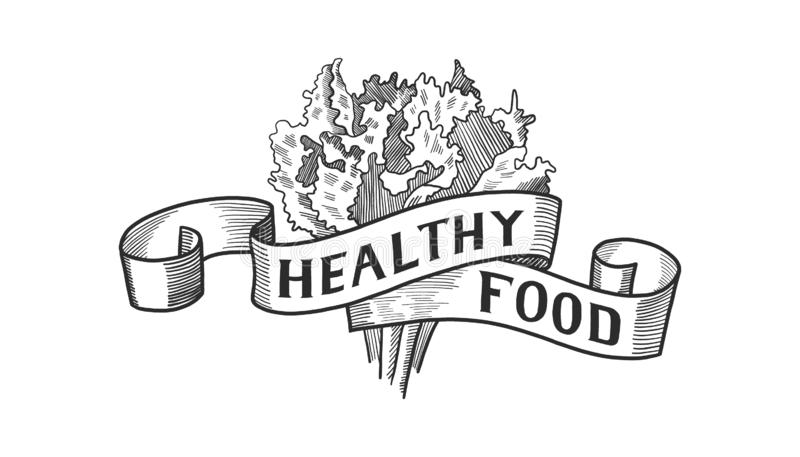 Hand drawn Healthy Food Logo lettering, badge, icon. Vegan or vegetarian poster. card, invitation. Vector illustration stock illustration