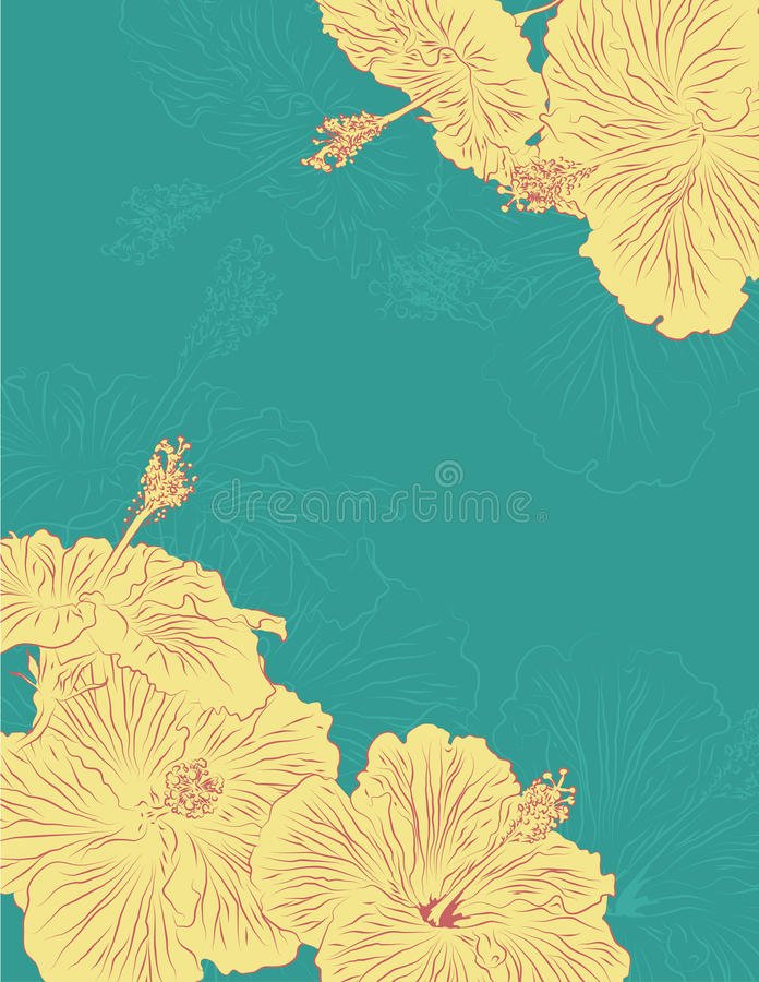 Download Hand Drawn Hibiscus Flower Page Layout Stock Vector - Image: 19401887