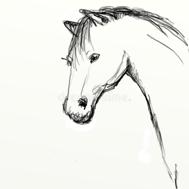 Download Hand Drawn Horse Head Sketch Stock Illustration - Image: 20753209