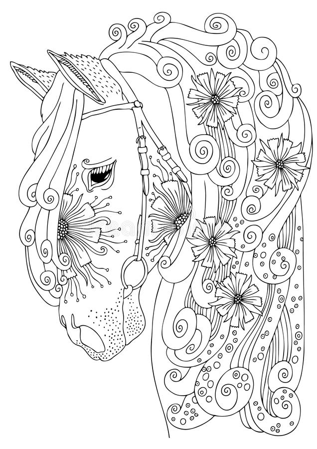 Download Hand Drawn Horse Head Sketch For Anti Stress Adult Coloring Book Stock