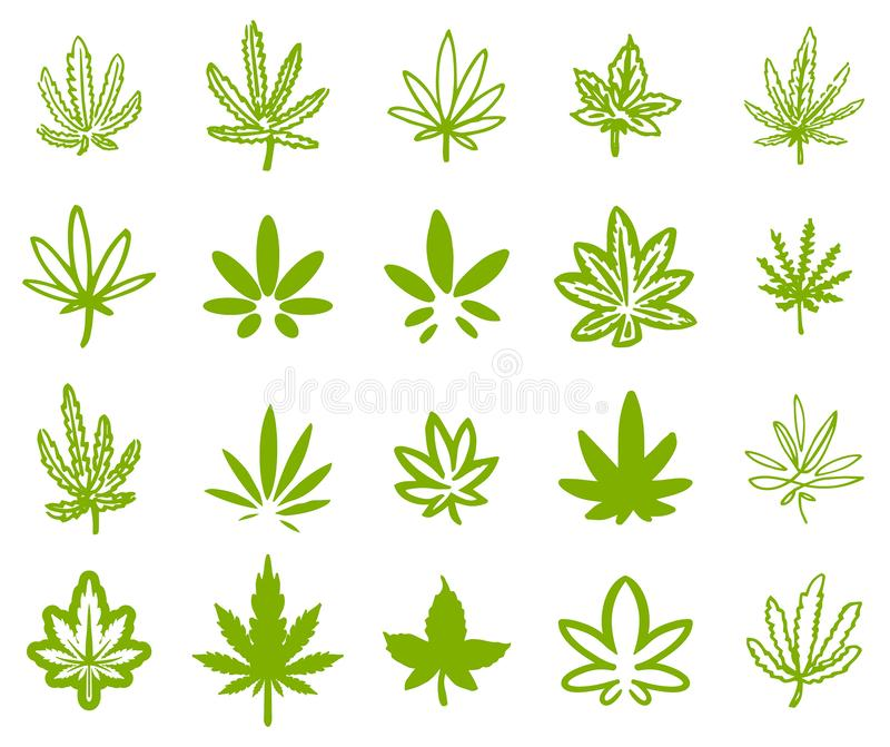 Hand drawn icon illustration set of green hemp cannabis leaf. On white background royalty free illustration