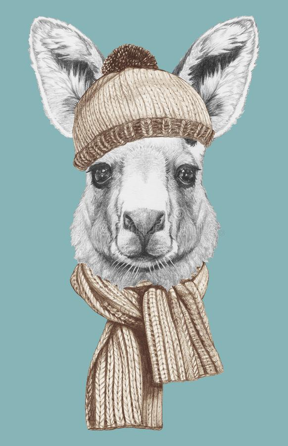 Portrait of Kangaroo with scarf and hat, hand-drawn illustration. Hand drawn illustration of animal stock illustration
