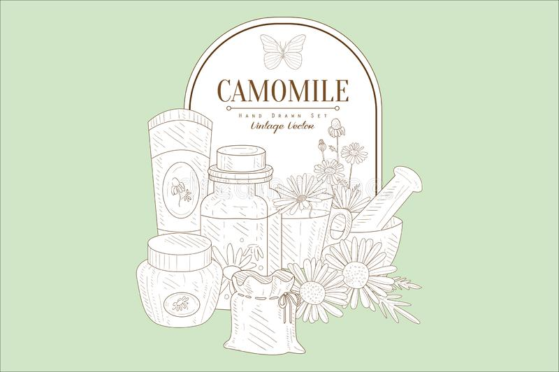 Hand drawn illustration of natural chamomile cosmetics for skin care. Curative plant. Cup of tea from medicinal herb. Hand drawn illustration of natural royalty free illustration