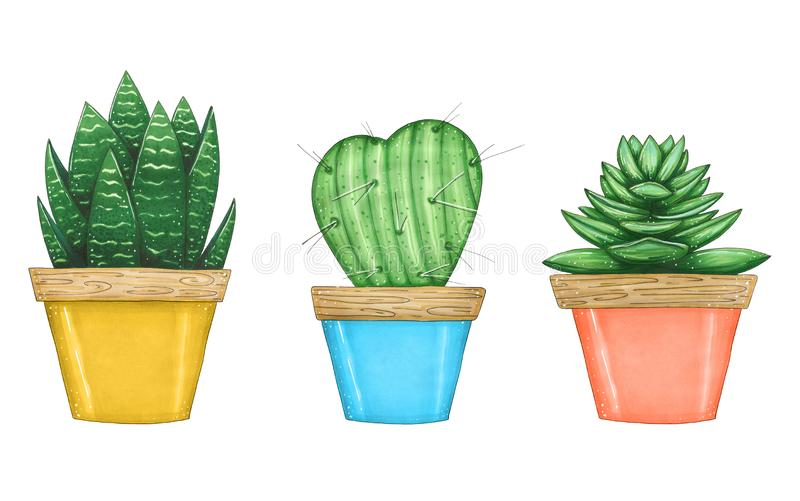 Hand drawn illustration with set of house plants vector illustration