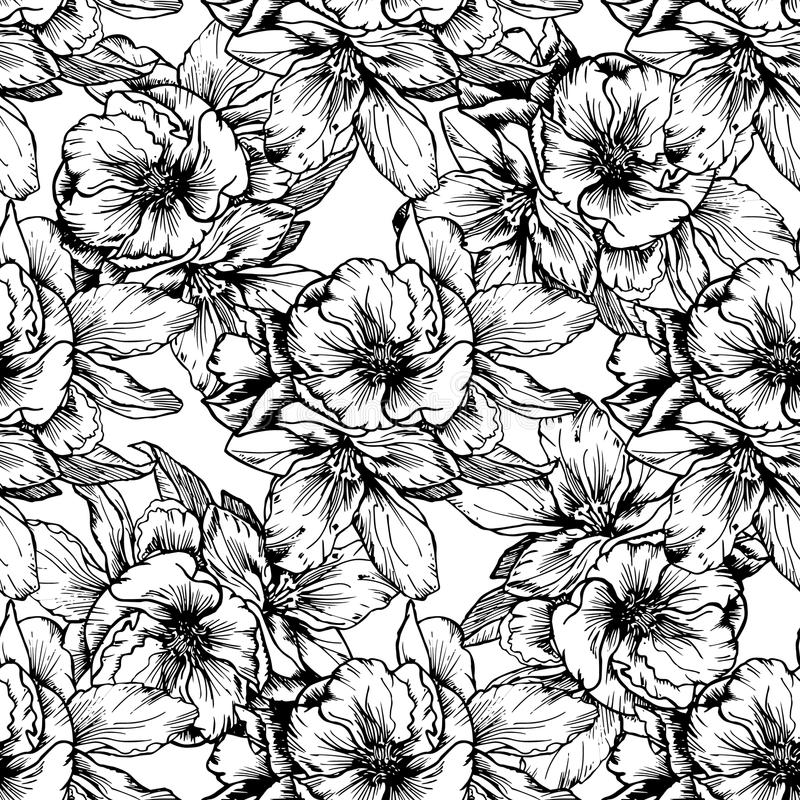 Hand-drawn illustrations. Black and white flowers and poppies. Seamless pattern. vector illustration