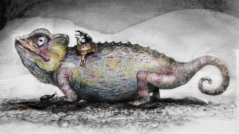 Hand drawn image of a chameleon royalty free stock images