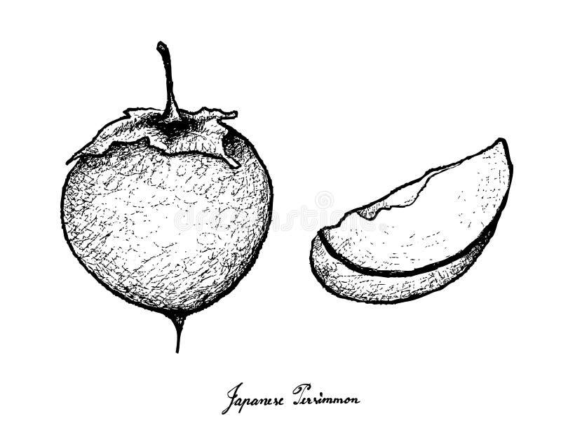 kaki persimmon stock illustrations 374 kaki persimmon stock illustrations vectors clipart dreamstime 374 kaki persimmon stock illustrations