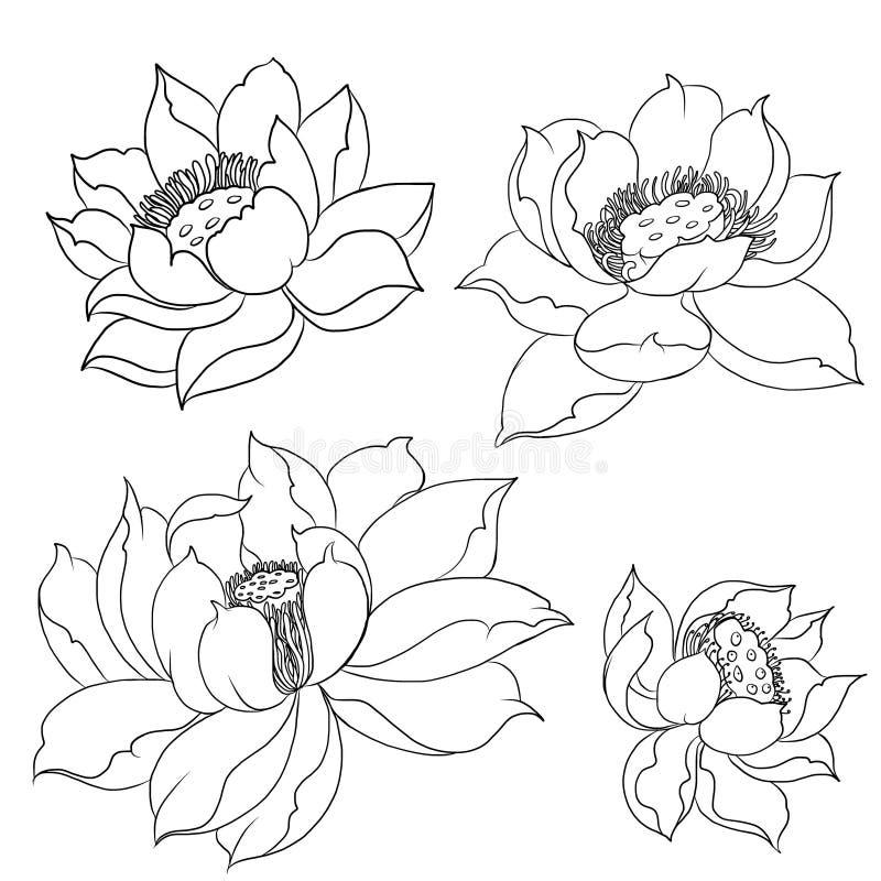 Hand drawn Koi fish isolate vector set and Japanese tattoo stock illustration