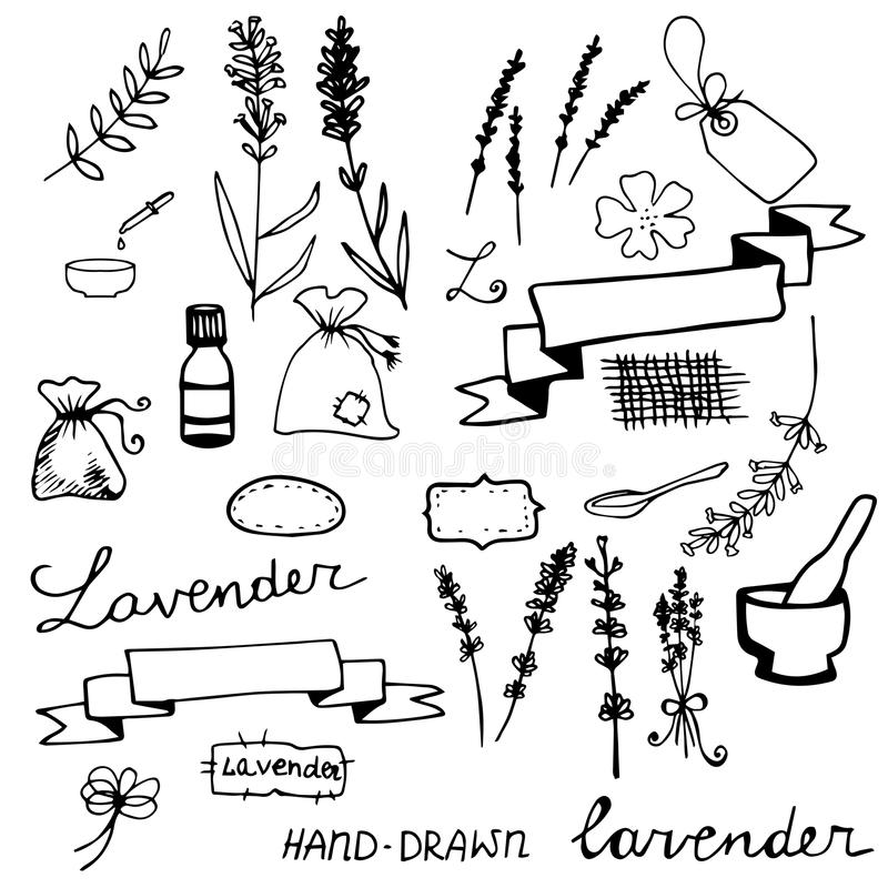 Hand drawn lavander set. Monochrome on light background stock illustration