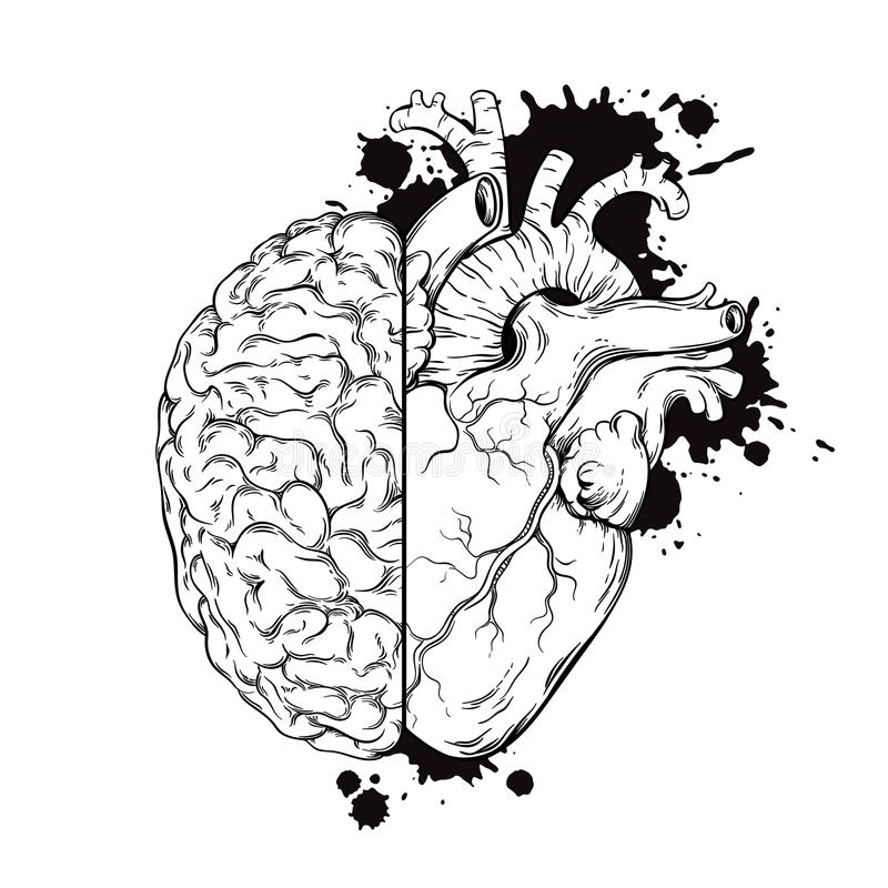 Hand drawn line art human brain and heart halfs. Grunge sketch ink tattoo design on white background vector illustration stock illustration