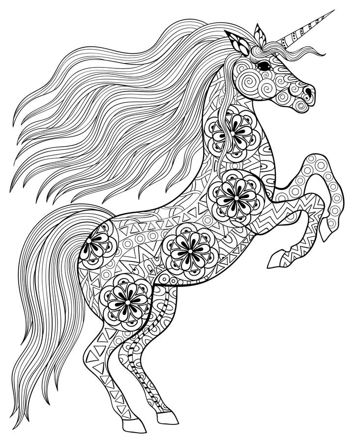 Hand drawn magic Unicorn for adult anti stress Coloring Page wit. H high details isolated on white background, illustration in zentangle style. Vector monochrome