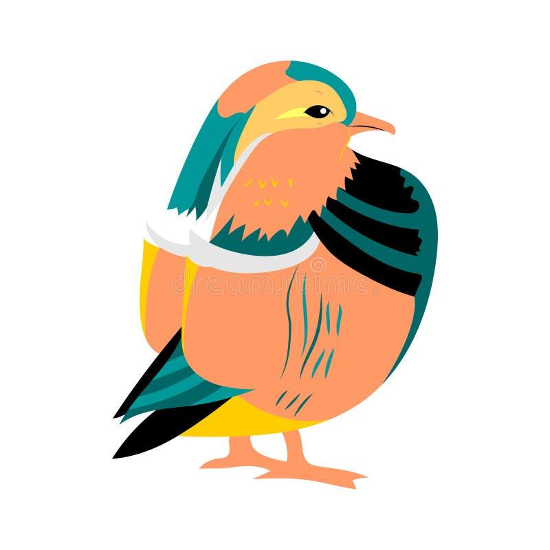 Hand Drawn Mandarine Dark. Exotic Oriental Cute Bird Isolated on White. Perfect for Print royalty free illustration