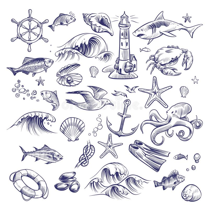Hand drawn marine set. Sea ocean voyage lighthouse shark crab octopus starfish knot crab shell lifebuoy collection stock illustration
