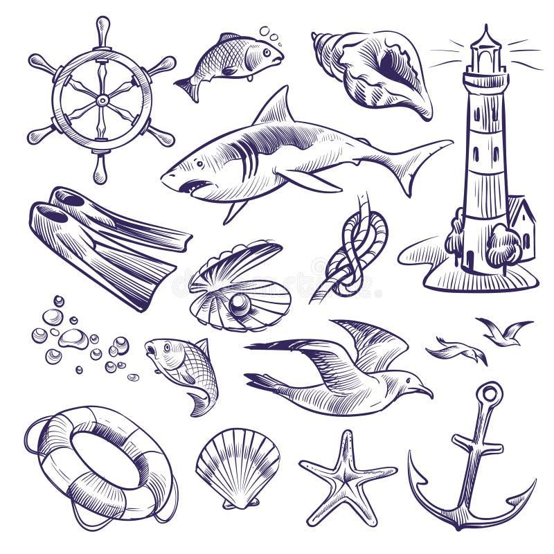 Hand drawn marine set. Sea ocean voyage lighthouse shark knot shell lifebuoy seagull anchor steering wheel. Nautical sketch vector royalty free illustration