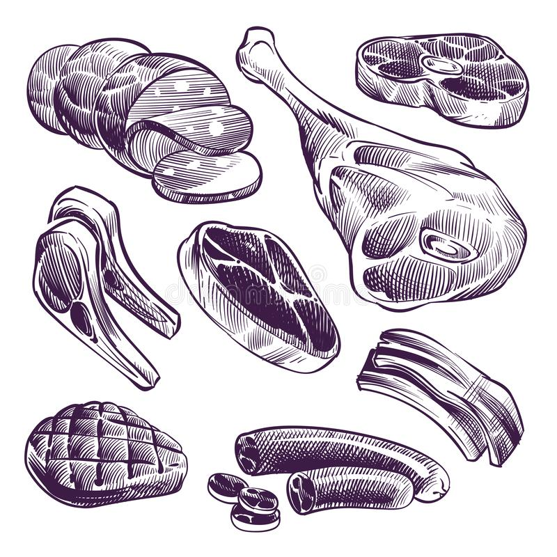 Hand drawn meat. Steak, beef and pork, lamb grill meat and sausage vintage sketch vector illustration. Beef and meat for barbecue, pork steak and beefsteak vector illustration