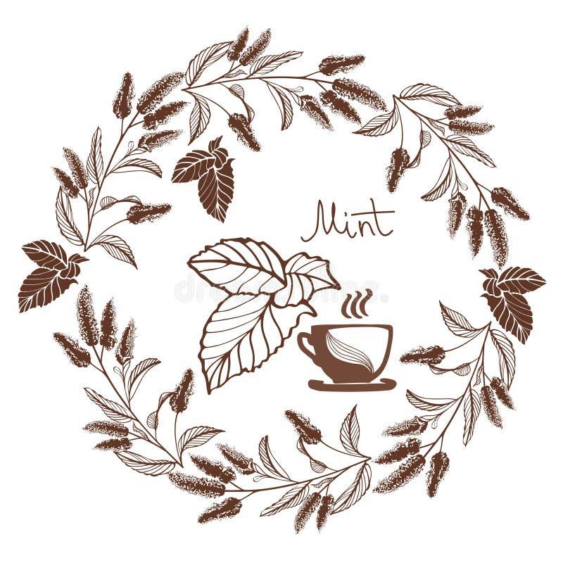 Hand drawn mintn flowers vector illustration stock image