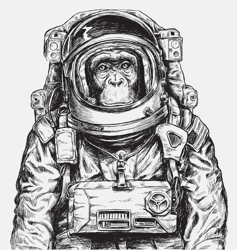 Hand Drawn Monkey Astronaut Vector royalty free illustration