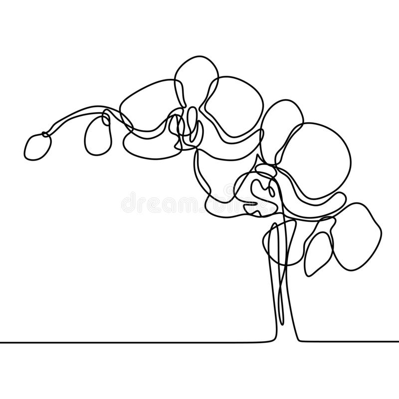 Hand drawn orchid flower. One line drawing continuous illustration vector. Minimalist art design of minimalism on white background. Nature, decoration, logo vector illustration