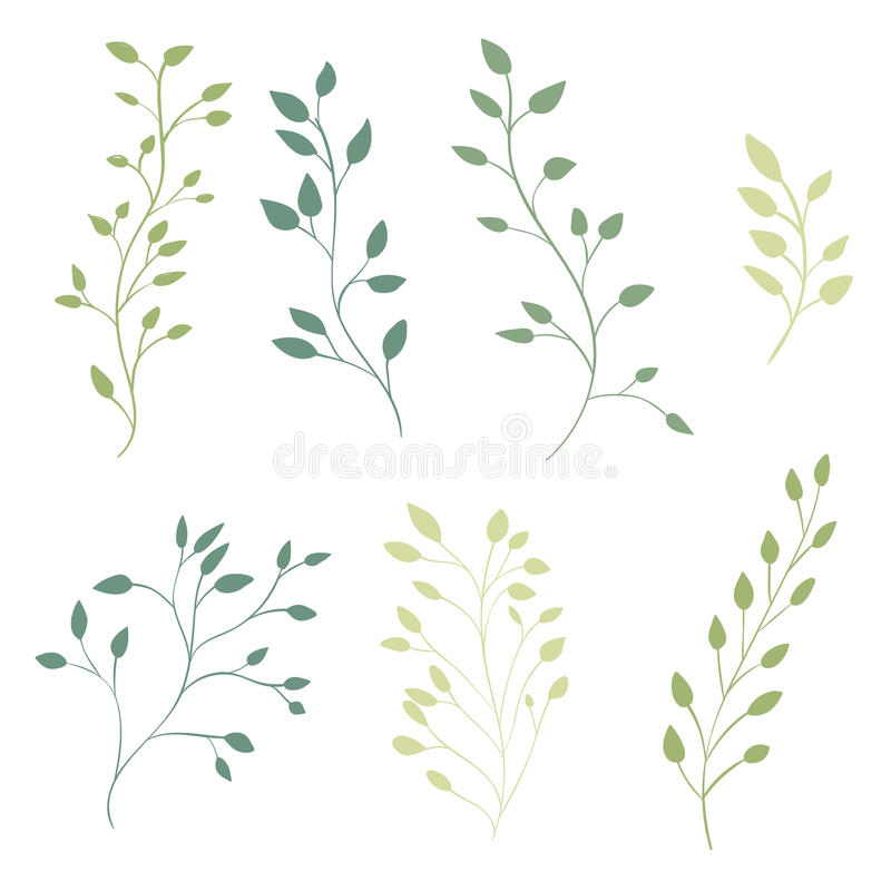 Hand drawn ornate branches with leaves. Vector vector illustration