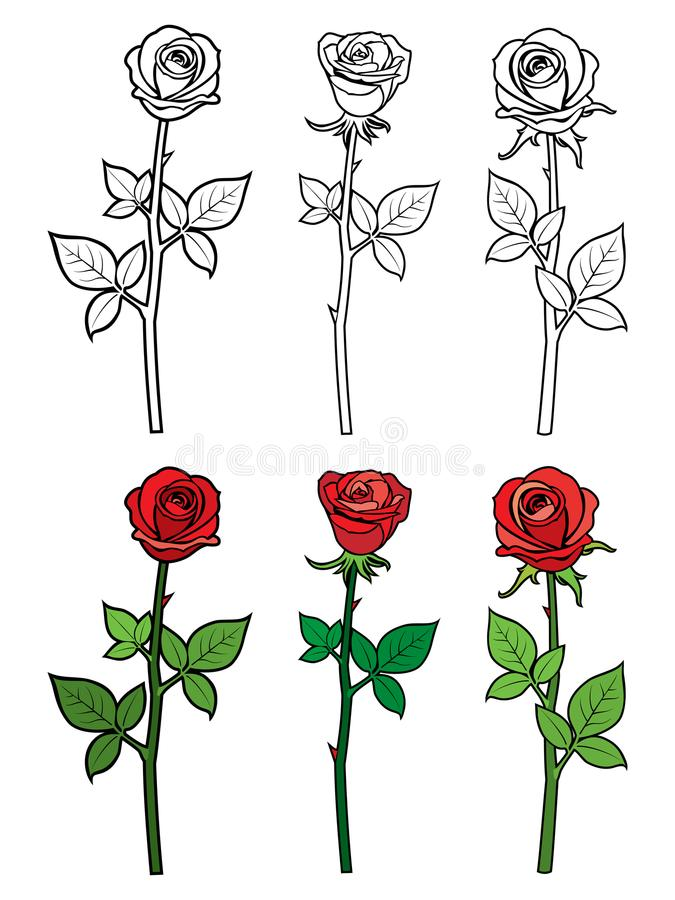hand drawn ouline red roses flowers hand drawn ouline red roses flowers coloring page vector illustration