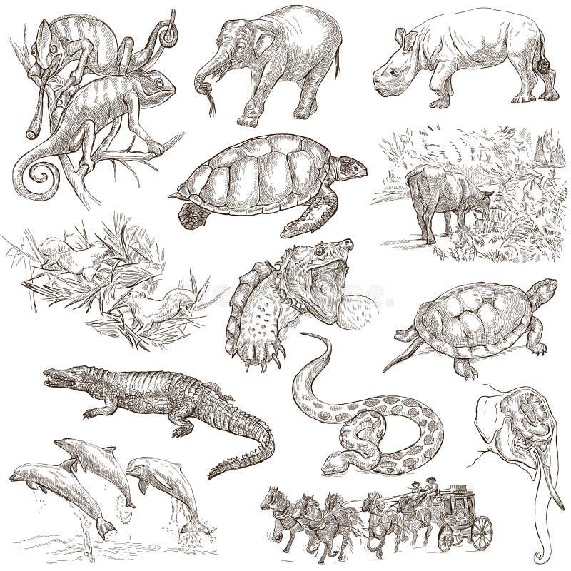 An hand drawn pack, line art - Animals stock illustration