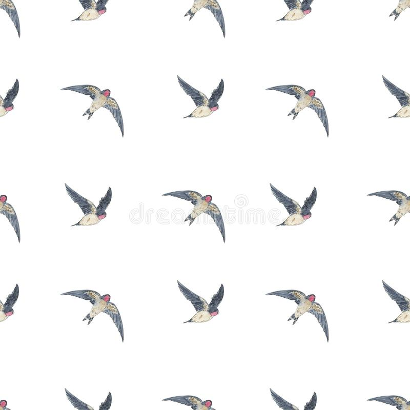 Hand drawn painted seamless pattern of watercolor sketch of isolated birds swallow on white background. Hand drawn painted seamless pattern of watercolor sketch royalty free illustration