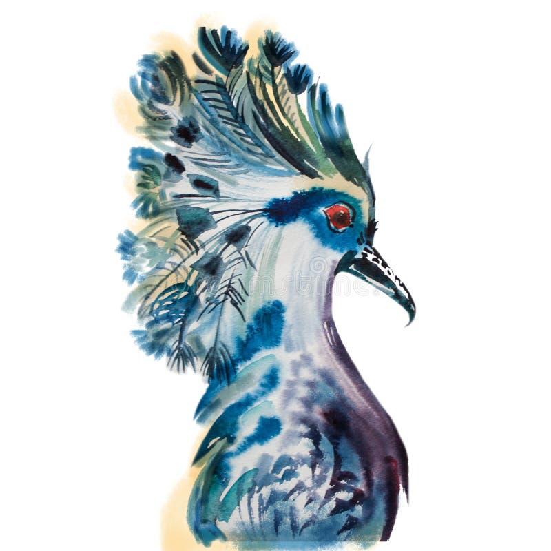 Hand drawn parrot head vector illustration