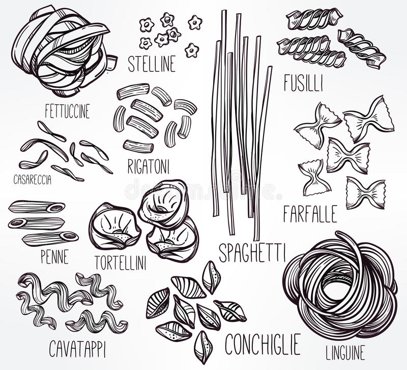 Line Drawing Zucchini : Hand drawn pasta variations set stock vector
