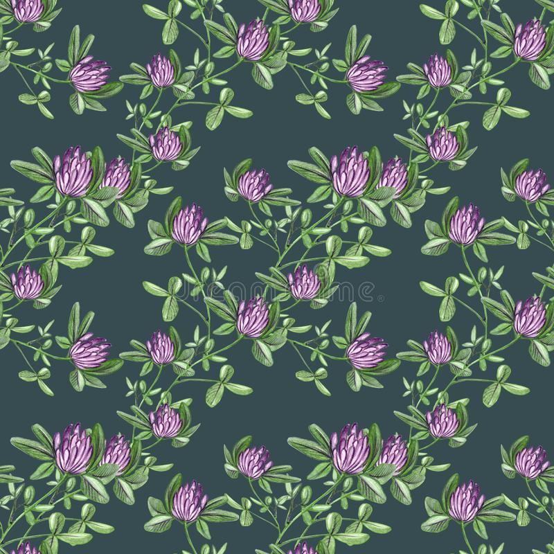 Hand drawn pattern seamless watercolor red clover flower branch illustration on dark green background. royalty free illustration