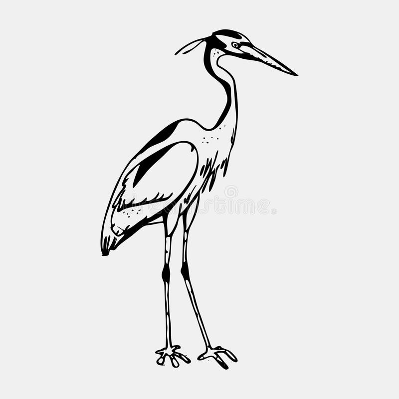 Hand-drawn pencil graphics, heron. Engraving, stencil style. Hand-drawn pencil graphics heron. Engraving stencil style. Black and white logo sign emblem, symbol stock illustration