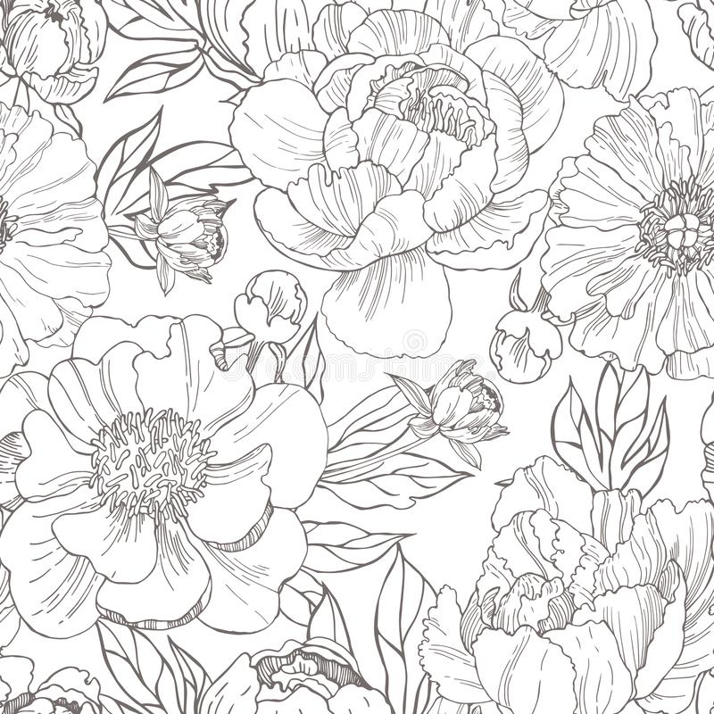 Hand drawn peonies. Vector seamless pattern. royalty free illustration