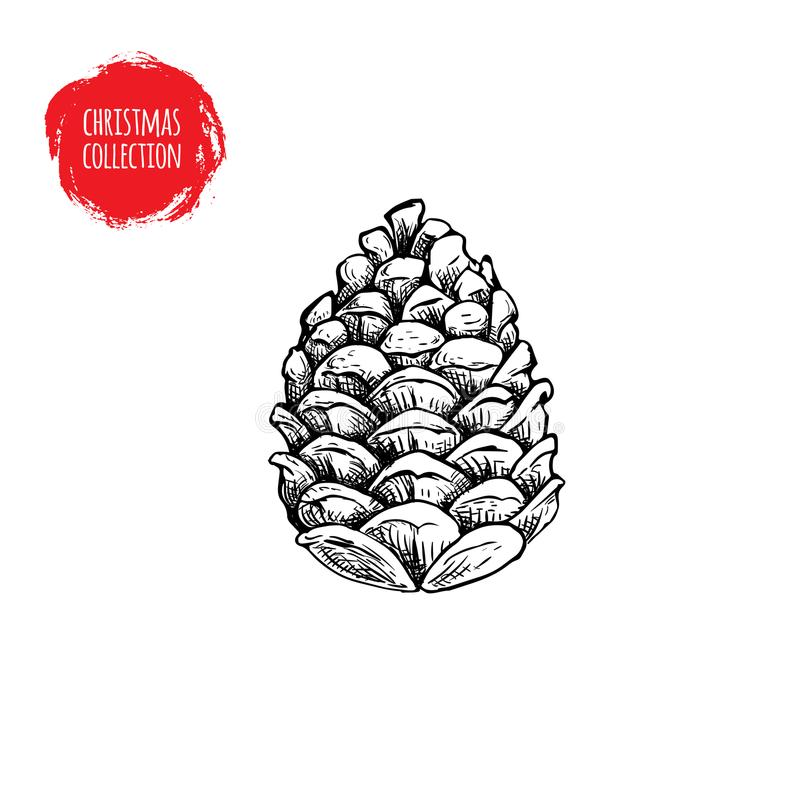 Free Hand Drawn Pine Cone Sketch Style. Christmas Symbol Isolated On White Background. Stock Photo - 104753480