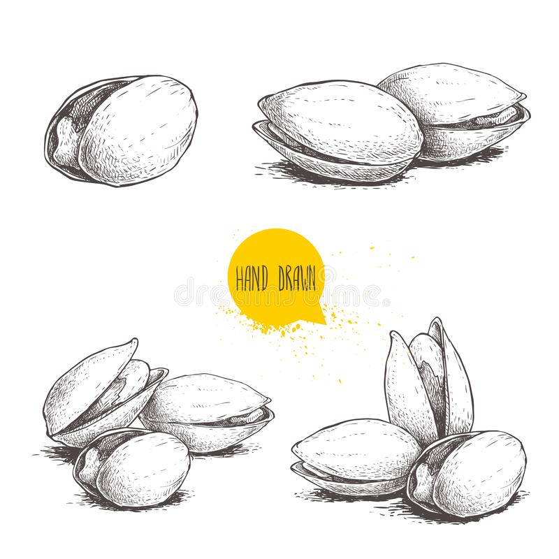 Free Hand Drawn Pistachios Set. Open And Fried Fresh Organic Food. Singles And Group. Nuts Vector Illustrations Isolated On White Stock Photos - 131528963