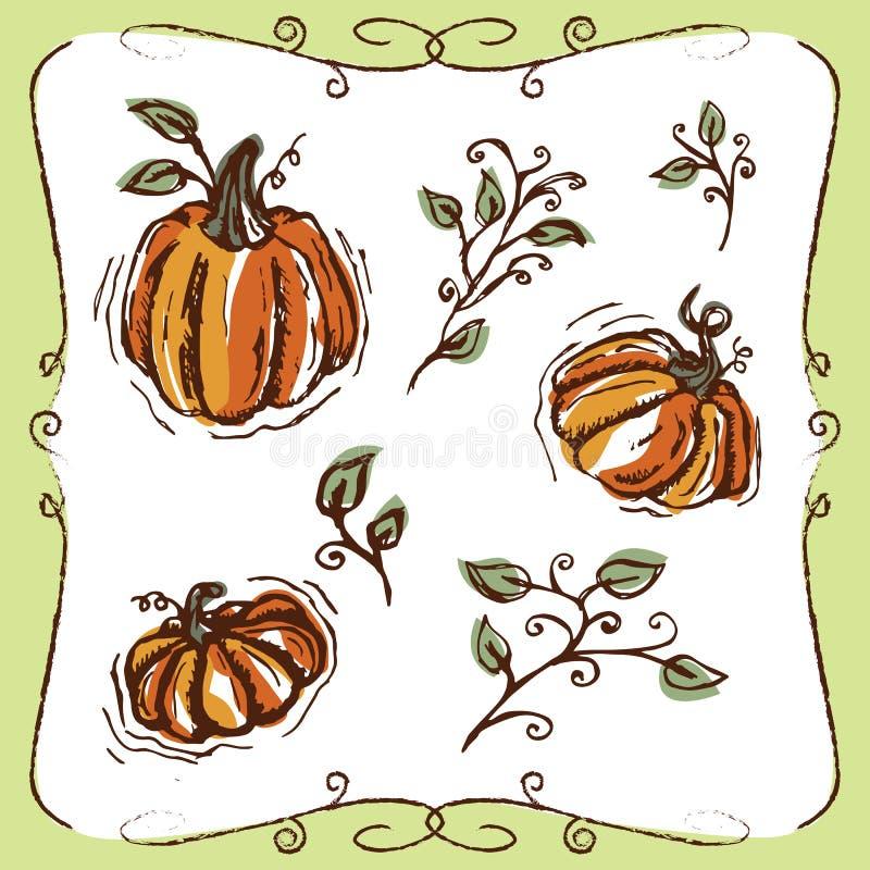 Hand-drawn pompoenen en wijnstokken royalty-vrije stock foto's
