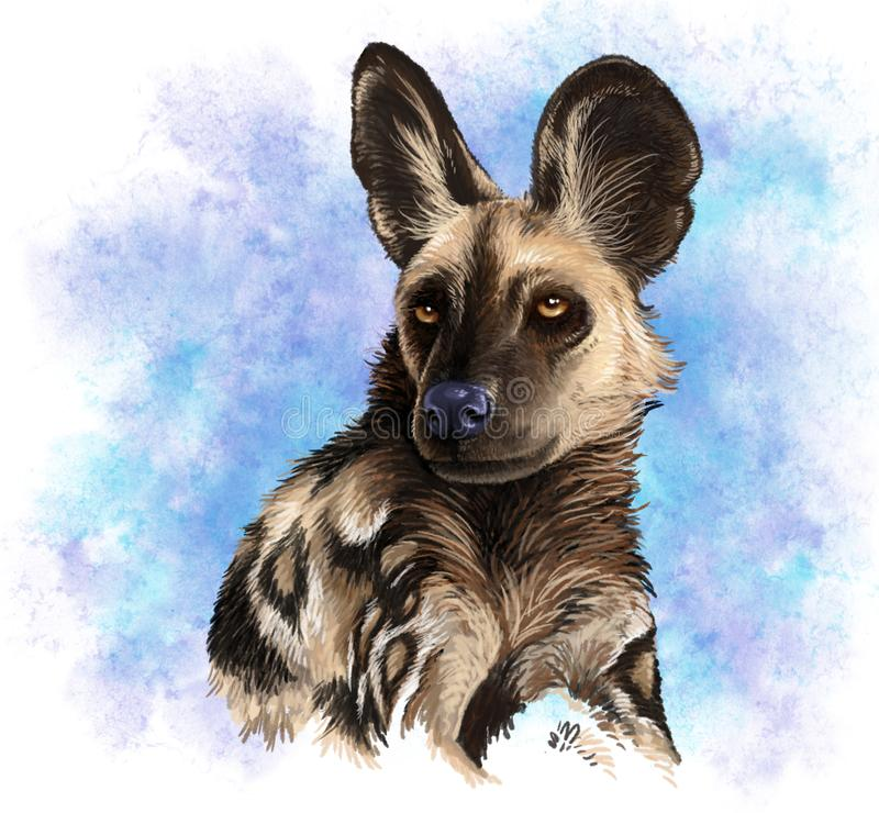 Hand drawn portrait of an African Wild Dog stock illustration
