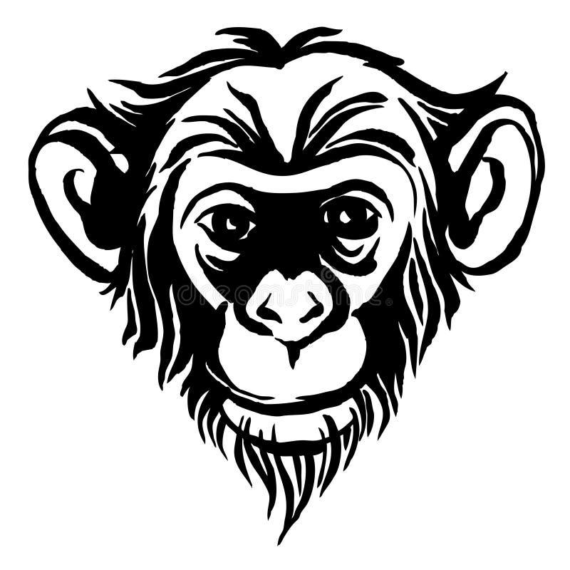 Hand drawn portrait of monkey chimpanzee. Black and white vector illustration