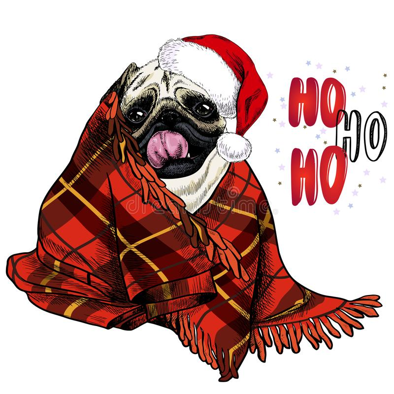 Hand drawn portrait of pug dog wearing santa hat and plaid blanket. Vector Christmas poster. Xmas greeting card. Winter vector illustration