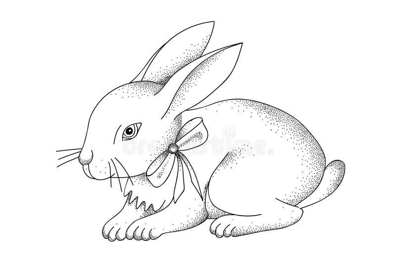 Hand-drawn portret van konijn Oostelijk Konijntje Vector illustratie royalty-vrije illustratie