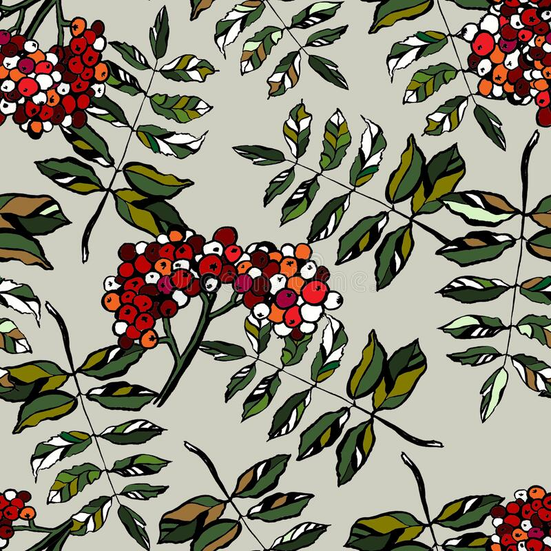 Hand drawn realistic rowan tree leaves and berries seamless background. Floral botanical endless texture. Ashberry royalty free illustration