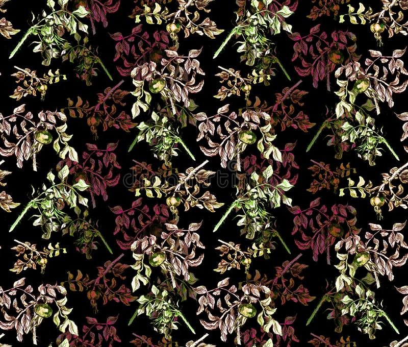 Hand drawn rosehip wallpaper on color background royalty free illustration