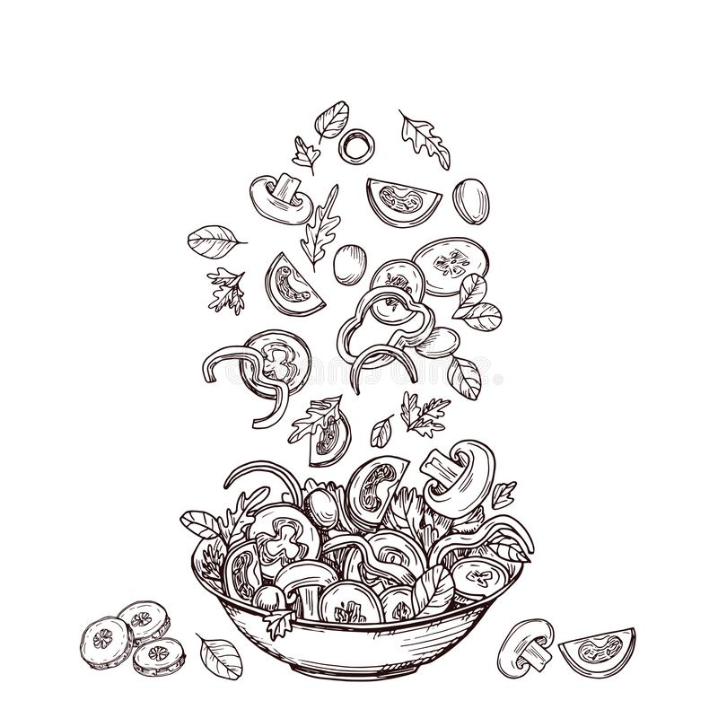 Hand drawn salad. Fresh vegetable slices falling to salad-bowl. Green salads diet and healthy food vector sketch concept vector illustration