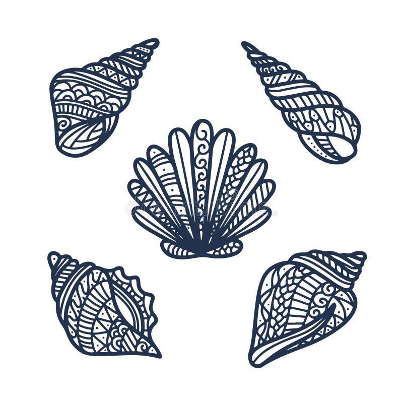 Hand drawn sea shells set. Vector illustration. vector illustration