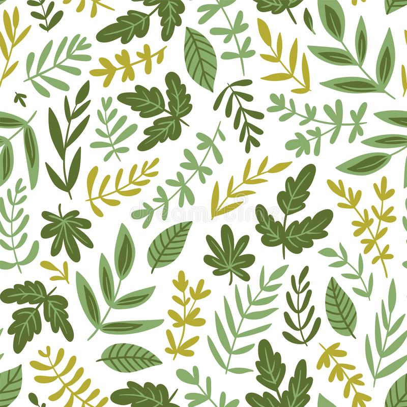 Hand drawn seamless pattern - salad greens and leaves isolated on white background in trendy organic style. Vector illustration. Hand drawn seamless pattern stock illustration