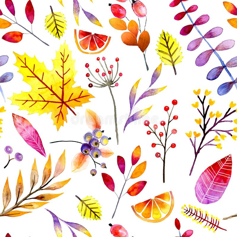 Hand drawn seamless pattern. Watercolor forest leaves and berries. Autumn abstract botanical branches. Guelder, maple stock illustration