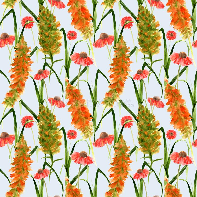 Hand drawn seamless pattern with wild watercolor yellow flowers, red Echinacea, herbs and grasses on a gray background royalty free stock photos
