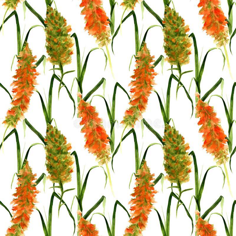 Hand drawn seamless pattern with wild watercolor yellow and green flowers, herbs and grasses on a white background stock illustration