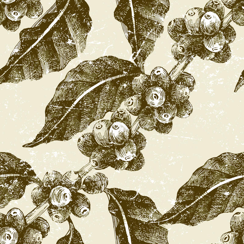Free Hand Drawn Seamless Pattern With Coffee Pant Stock Images - 62731424