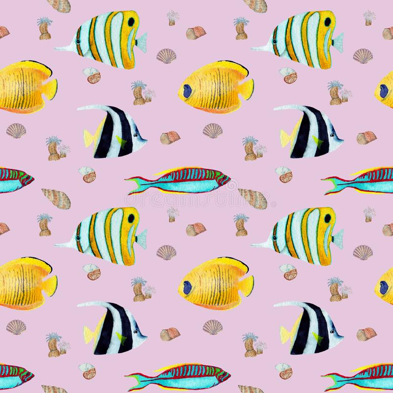 Hand drawn seemless pattern in watercolor sea world natural element. Corals shells fish on rose background royalty free stock photography